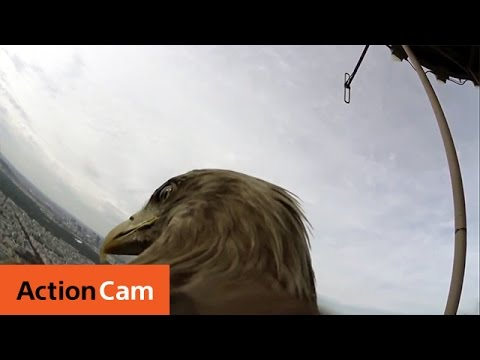 Action Cam | Flying Over Paris – The Eagle POV | Sony