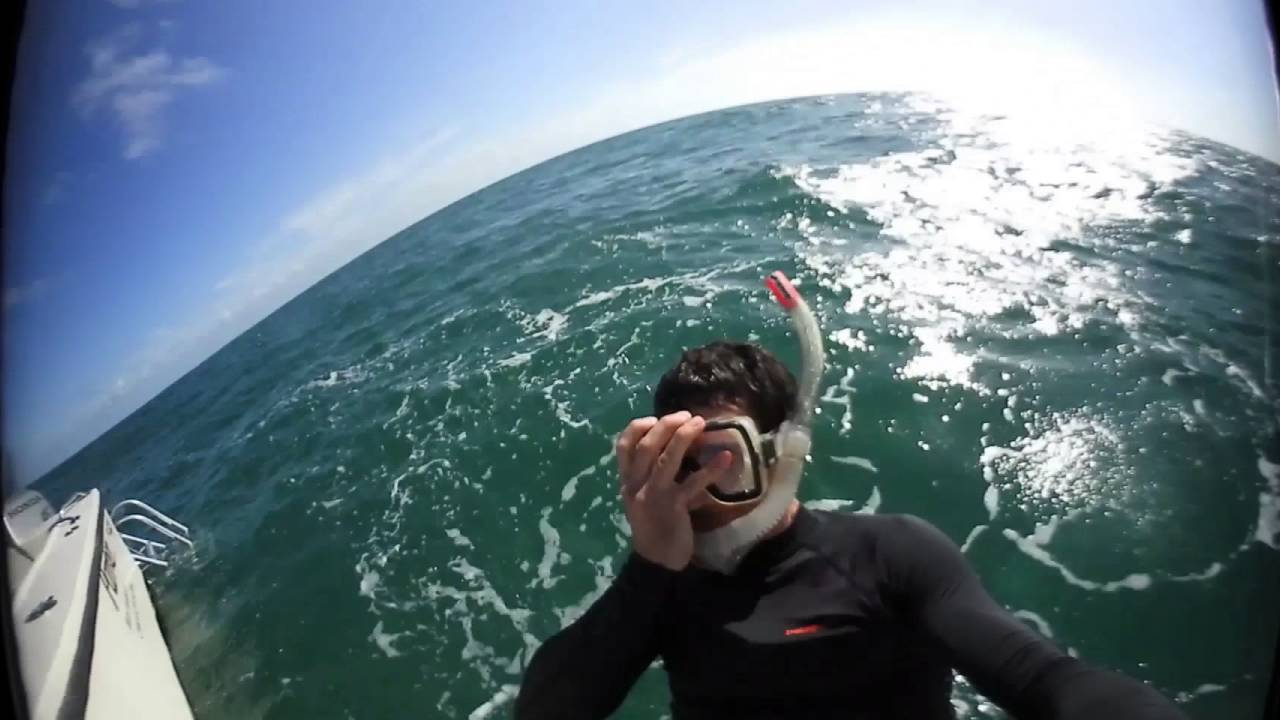 Nikon KeyMission 360: Chris – I AM EYES ON SCIENCE in full 360°
