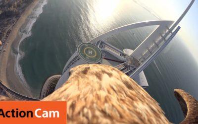 Flying over Dubai's Burj Al Arab | The Eagle POV | Action Cam | Sony