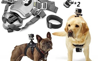 Recommended: Fetch Dog Harness Chest Mount for Gopro HERO 5/4/3 Black Silver Session(10-in-1)