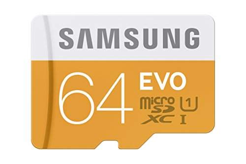 Recommended: Samsung EVO 64GB  Micro SDXC Memory Card with Adapter up to 48/MB/s (MB-MP64DA/AM)