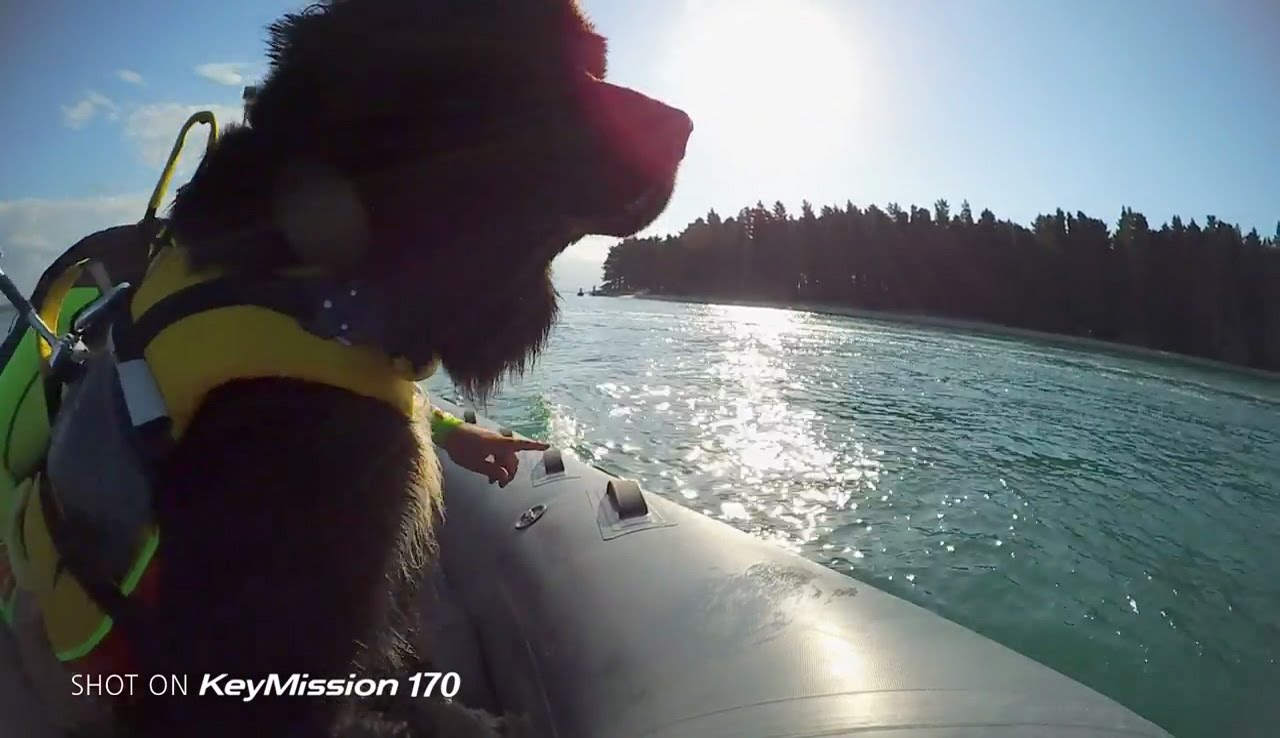 Nikon KeyMission Story: Lifeguard on four paws with Ted