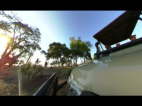 360fly: African Bush Camp