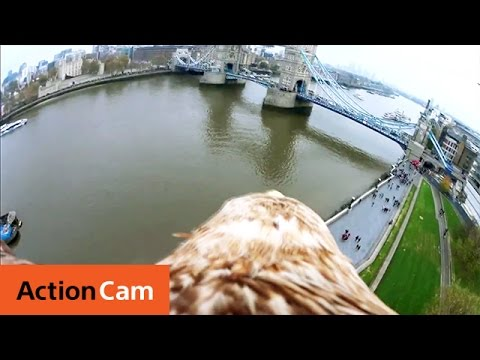 The London Tower Bridge Eagle POV | Action Cam | Sony