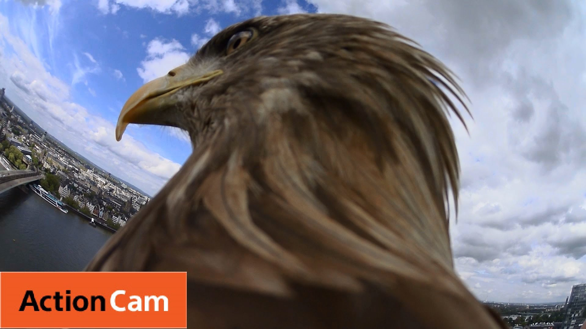 Action Cam | Flying from Cologne Cathedral | The Eagle POV | Sony