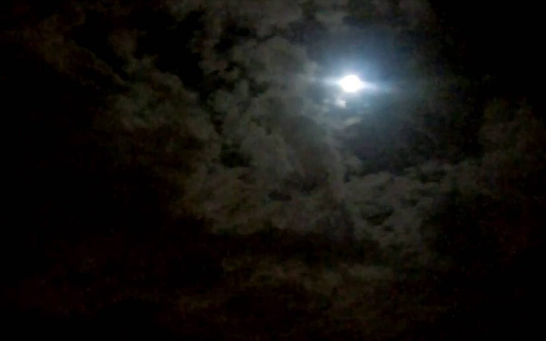 WASPcam Nighttime Timelapse