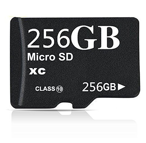 256GB Class 10 Micro SDHC Memory Card with SD Adapter (256GB)