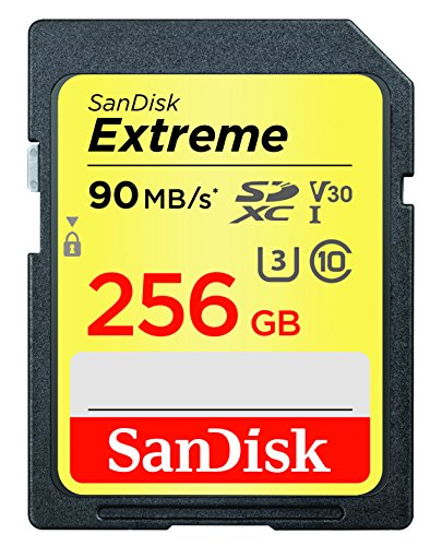SanDisk Extreme 256GB SDXC UHS-I Card – SDSDXVF-256G-GNCIN [Newest Version]