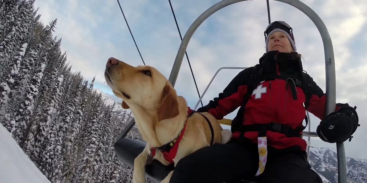GoPro Awards: Telluride Avalanche Dogs