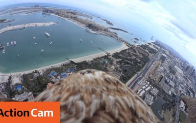 Flying over Dubai's Palm Island The Eagle POV | Action Cam | Sony