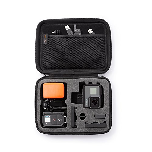 AmazonBasics Small Carrying Case for GoPro And Accessories – 9 x 7 x 2.5 Inches, Black
