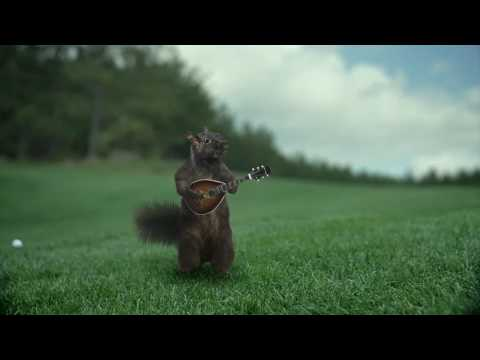 Garmin 2009 Holiday Ad – Squirrel