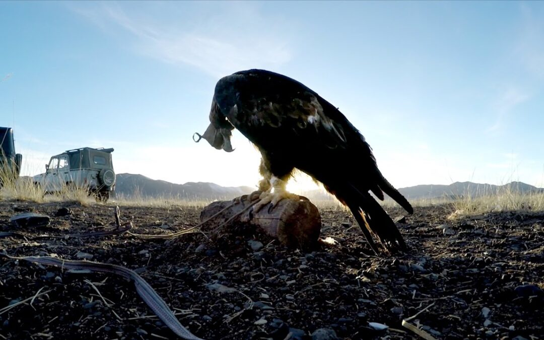 GoPro: Eagle Hunters in a New World Trailer