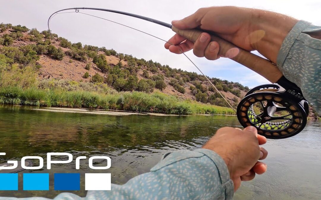 GoPro: Fishing and Camping with Flylords